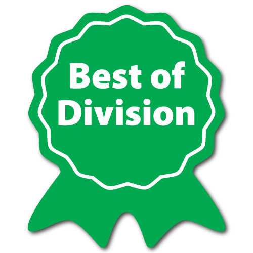 """Best of Division"" Ribbon Award Labels"