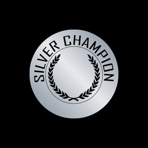 Silver Champion Award Stickers